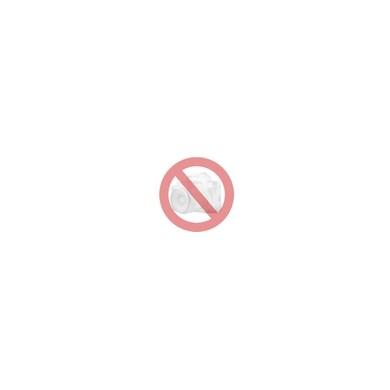 Epson Atrament Tusz| StylusPhoto R800 PhotoCyan 400str